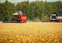 Как зарегистрировать крестьянское (фермерское) хозяйство в 2018 году (пошаговая инструкция) в Республике Крым