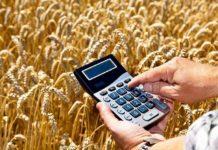 Книга доходов и расходов крестьянского (фермерского) хозяйства