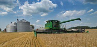 Кодировки для фермера - ОКВЭД для КФХ