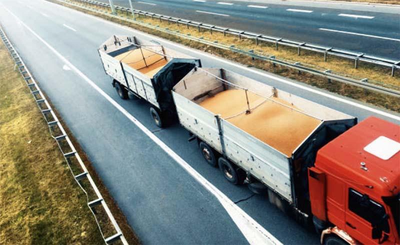Контрабанда зерна из Новосибирской области превысила легальный экспорт