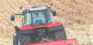 Контроль фузариоза на пшеницы после кукурузы