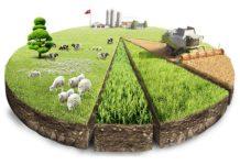 Налог на землю для КФХ