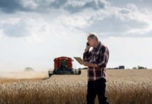 Регистрация крестьянско-фермерского хозяйс