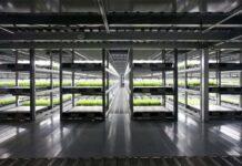 В Британии планируют создание роботизированной фермы из-за нехватки трудовых ресурсов