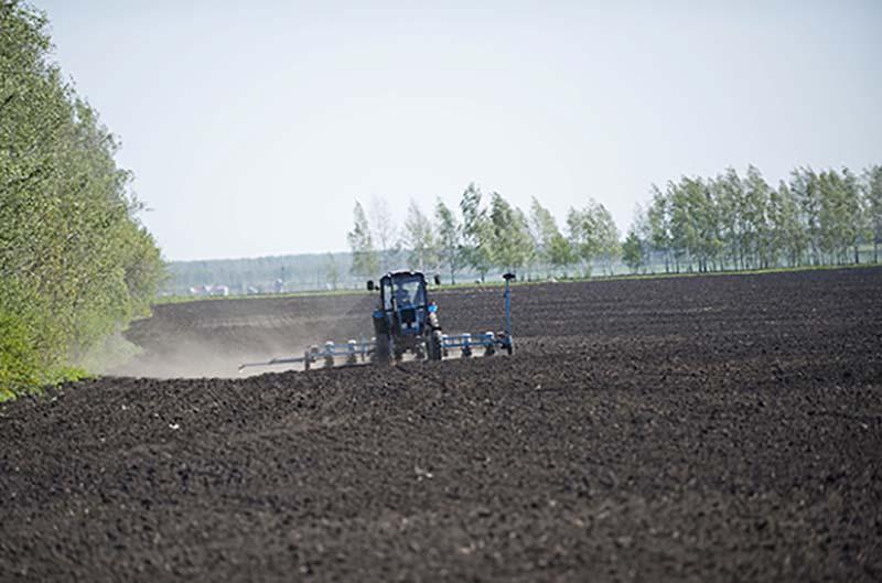 В России упразднили устаревшие акты по сельскому хозяйству и рыболовству