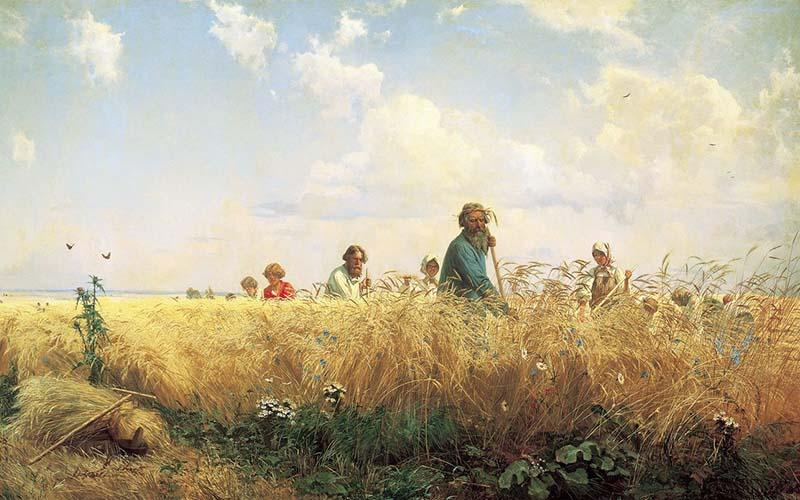 Жатва 2020: на 30 июля намолот зерна превысил прошлогодний на 5 млн тонн