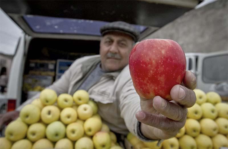 Photo of Грузия продала России более 90% экспортных яблок