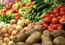 Эксперты объяснили причину сокращения экспорта сельхозпродукции