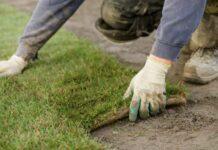 Пошаговое руководство по подготовке почвы под газон своими руками