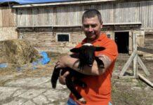 Сахалинские фермеры поделились секретами своего дела