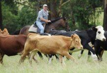 Соглашение о создании крестьянского фермерского хозяйства