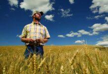 Управление крестьянскими хозяйствами