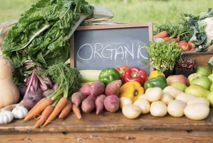 Экспорт органической продукции из России приостановлен из-за фумигации