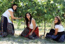 Сборщикам урожая в Испании выдадут двухлетнее разрешение на проживание и работу