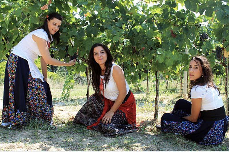 Photo of Сборщикам урожая в Испании выдадут двухлетнее разрешение на проживание и работу