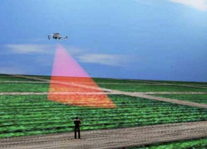 Новгородские ученые разработали инновационное устройство для выращивания экологически чистой продукции