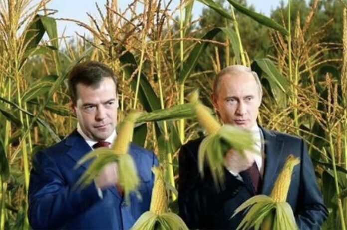 Олигархи-фермеры завладели 70% пахотных земель планеты