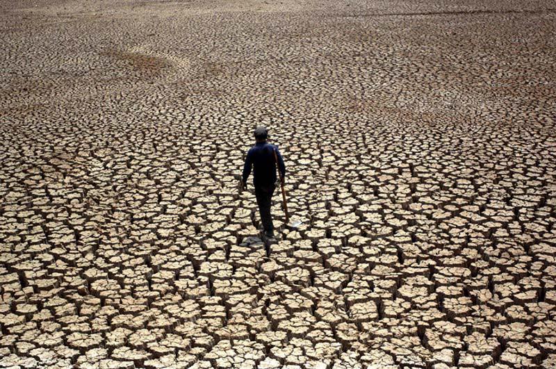 Пострадавшие от засухи фермеры Калмыкии недовольны помощью властей