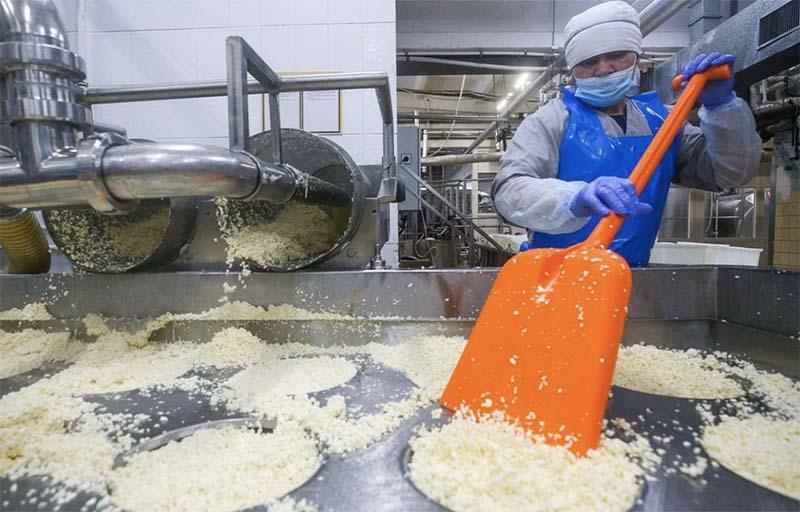 Российские производители просят вернуть пошлину при экспорте зерновых
