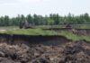 В Коми оштрафовали предприятие за разработку карьеров на землях сельхозназначения