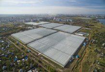 Арбитражный Суд Челябинской области прекратил производство по делу о признании Агрокомплекс «Чурилово» несостоятельным.