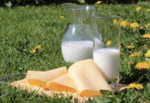 Бойкотирование Россией европейского молока снизило ее зависимость от импорта молочной продукции