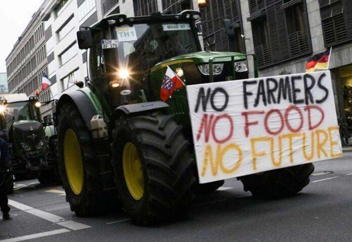 Lidl готовит акцию по поддержке протестующих фермеров