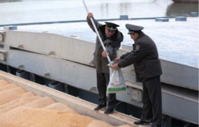 На границе задержали экспортную пшеницу