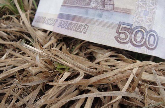 Пострадавшие от засухи алтайские сельхозпроизводители получат мизерную компенсацию