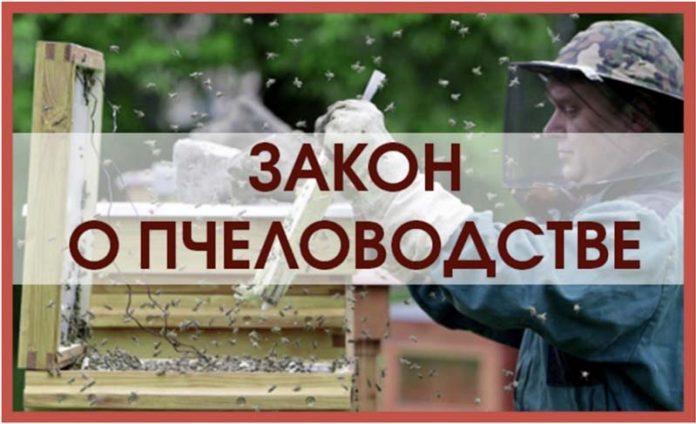 В России установят правовые основы развития пчеловодства как отрасли сельского хозяйства