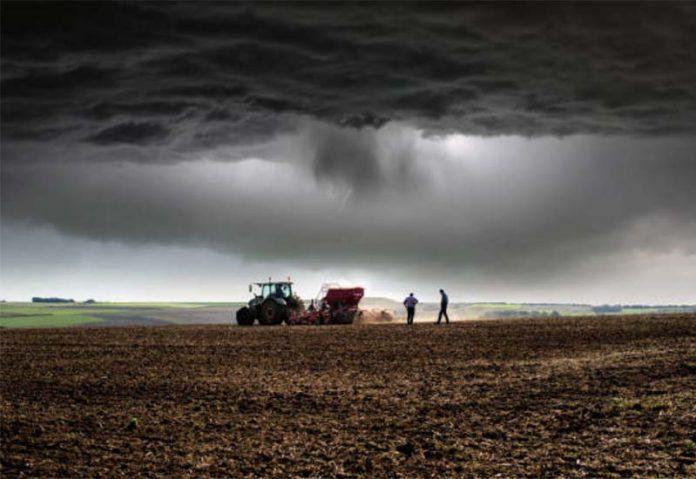 На рынке сельхозземель отмечается активность инвесторов