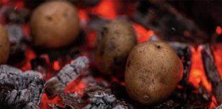 Российских дачников ждут штрафы за неправильную картошку