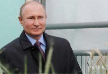 Аграрии просят Путина не ужесточать меры по ограничению экспорта пшеницы