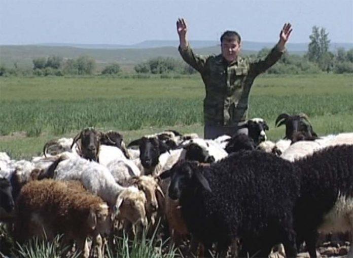 Что происходит с аграрным сектором Хакасии?