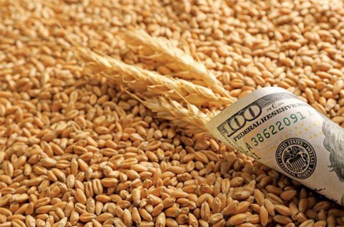 Низкий спрос со стороны импортеров снизил экспортные цены на российскую пшеницу