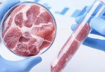Обнищавшие россияне будут вынуждены покупать искусственное мясо