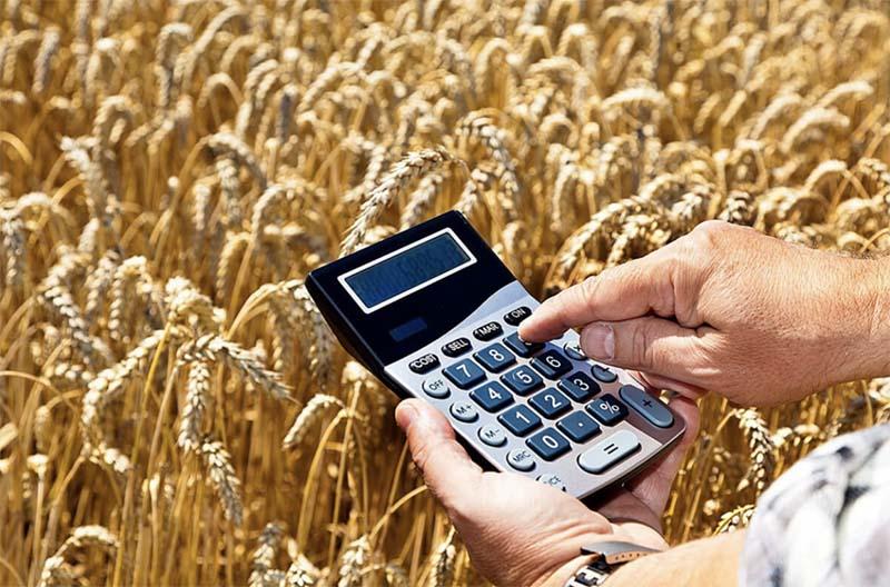 От обнуления сельхозналога в Башкирии бюджет не дополучит 300 млн