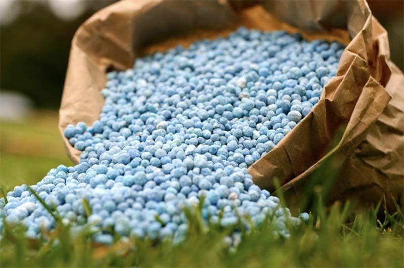 Причины стремительного роста цен на минеральные удобрения