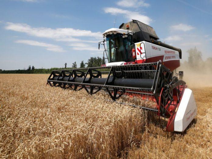 Рекордные поставки российского продовольствия за рубеж повода для радости не дают