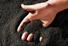 За непроверенное зерно тульскому фермеру придется выложить 15 тысяч рублей