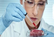 К 2035 году мир перейдет на искусственное мясо