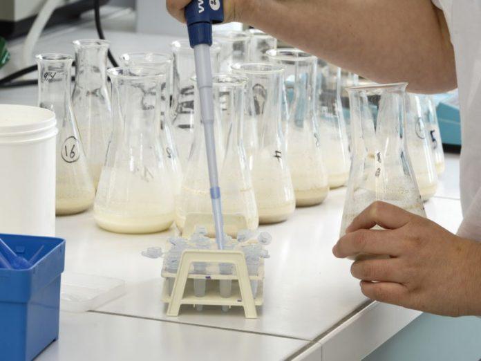 Брянский молочный комбинат оштрафован за нарушение нормативных требований