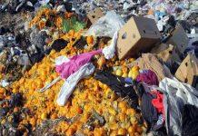 Ежегодно на свалку выбрасывается более 1 млрд тонн пищевых продуктов