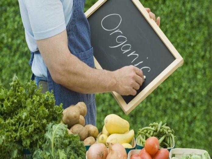 Европа хочет вкусной и здоровой еды