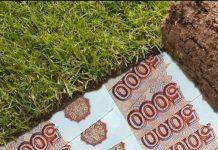 В Дагестане глава села проводил махинации с земельными участками