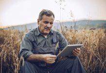 Сотрудничество Россельхозбанка и сети «Глобус» сократит путь фермерской продукции до полок гипермаркетов