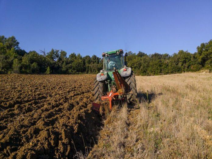В Новосибирской области резко повысился земельный налог для сельхозпредприятий и дачников