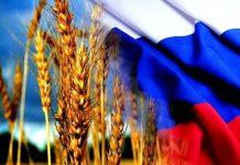 Правительство России пытается сдержать экспорт основных товаров