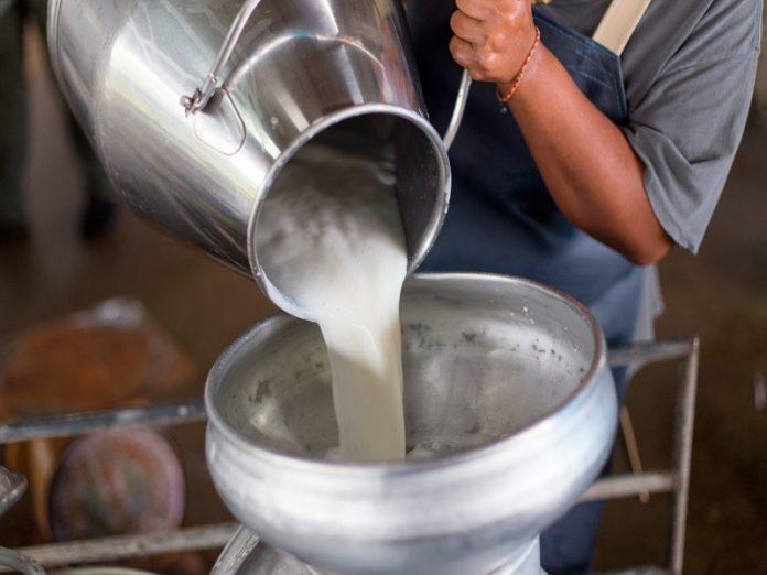 Затраты на производство сырого молоко существенно выросли