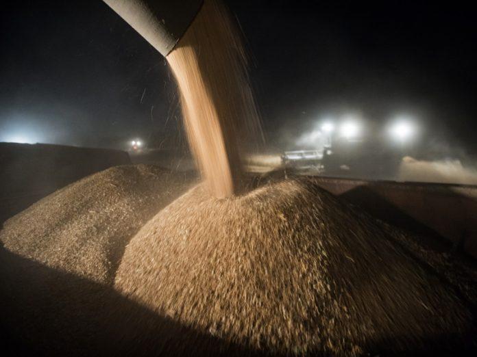 С 1 апреля Минсельхоз начал рассчитывать плавающую экспортную пошлину в рамках зернового демпфера